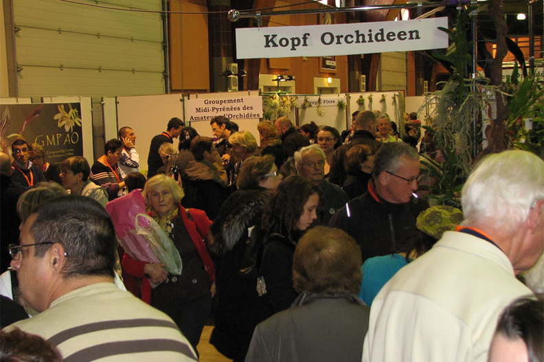 Expo_2012_stand9.jpg